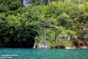 Perucac-jezero-Kanjom-s-(23)