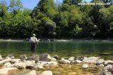 reka-drina-odmor-s10