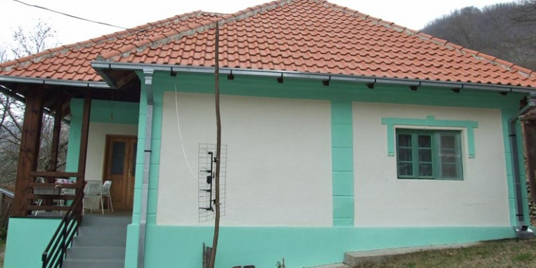 vila-drina-gvozdac-2