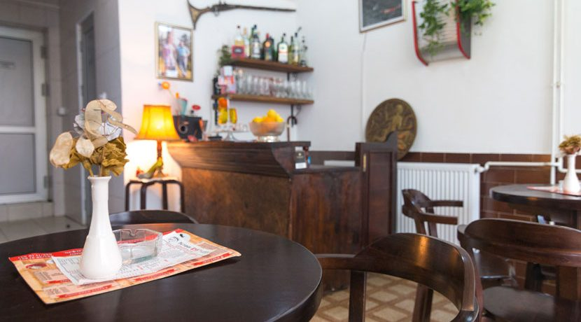 restoran-vuk-bajina-basta-5