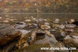 reka-drina-ribolov-river-fishing-3