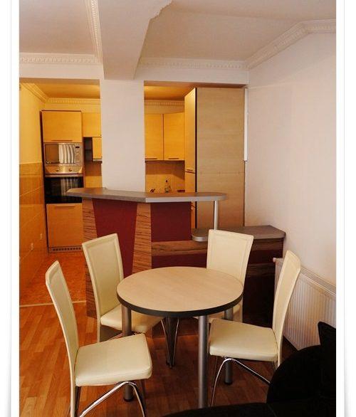 apartmani-centar-bajina-basta-drina-smestaj (4)