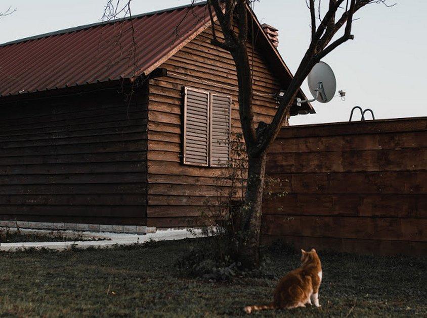 andrica-ranc-drina-smestaj-bajina-basta (18)