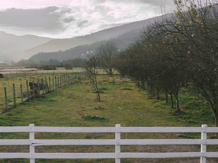 andrica-ranc-drina-smestaj-bajina-basta (6)